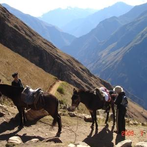 Choquequirao Trek with Pack Horses <br /> 5 Days - $952