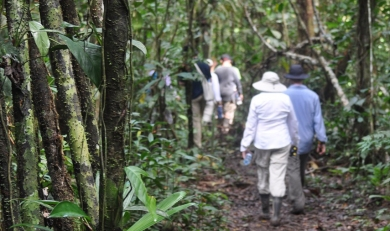 Amazon Rainforest 4 Days: 2 Eco-Systems